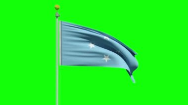Waving flag of the Federated States of Micronesia — Stock Video