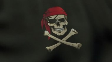 Loopable waving colored Jolly Roger pirate flag animation — Stock Video