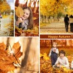 Autumn time collage landscape — Stock Photo