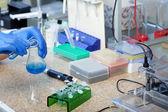 Laboratories experiment — Stock Photo