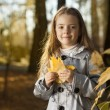 Happy girl in leaves autumn — Stock Photo #80410236