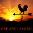 Rooster weather vane against sunrise, with Rise and Shine - text, get up and be awesome today — Stock Photo #71279989
