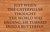 Just when the caterpillar thought the world was ending, he turned into a butterfly - an old proverb on wooden red oak — Stock Photo