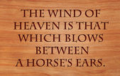 The wind of heaven is that which blows between a horse's ears -  Proverb on wooden red oak background — Stock Photo