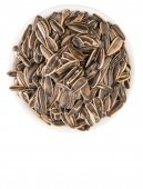 Sunflower Seeds In White Bowl — Stock Photo