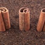 Cinnamon Stick On Dried Tea Leaves — Stock Photo #56726851