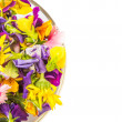 Mix Edible Flower Salad In Glass Bowl — Stock Photo #71279589