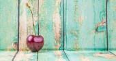 Frutti di ciliegio — Foto Stock