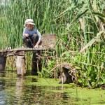 Boy while fishing — Stock Photo #52566875