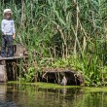 Boy while fishing — Stock Photo #52566879