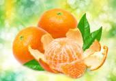 Mandarins on bright, green background — Stock Photo