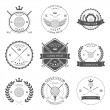 Golf labels and icons set. Vector — Stock Vector #72663385