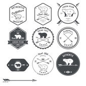 Set of vintage bear icons, emblems and labels — Stock Vector