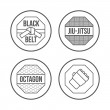 MMA Sport icons set. Thin Line Style. Vector — Stock Vector #77956172
