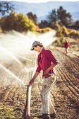 Woman setting irragation sprinklers. — Stock Photo