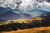Beautiful light beam in morning, mountain — Stock Photo