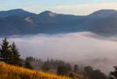 Fog on the mountain — Stock Photo