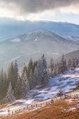 Majestic winter landscape glowing by sunlight. — Stock Photo