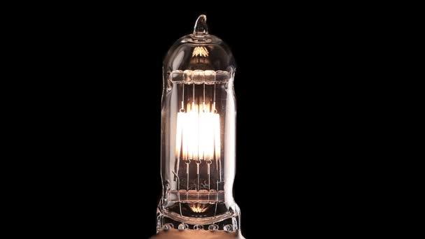 tungsteno lampadina : Lampadina reale lo sfarfallio. Filamento di tungsteno della lampadina ...