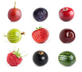 Collection of sweet berries — Stock Photo