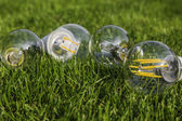 E27 tungsten, halogen and various LED bulbs on the grass — Stockfoto