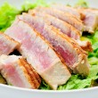 Tuna salad with fresh tuna fillets — Stock Photo #57790967