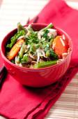 Stir fry with chicken and organic vegetables — Stock Photo