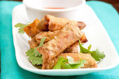 Hand made spring rolls — Stock Photo