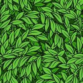 Laurel seamless background — Stock Vector