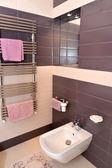 Fragmento interior cuarto de baño con el equipo sanitario — Foto de Stock