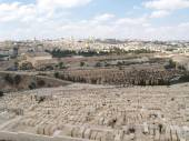 Panorama of Jerusalem overlooking an ancient Jewish cemetery on  — 图库照片