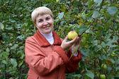 Kvinnan i genomsnitt år håller i hand apple om en apple-tr — Stockfoto