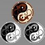 Dragon the yin yang. Dragons in the shape of the yin yang, symbol of harmony and balance. — Stock Vector #61006193