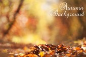 Defocused autumn background  — Stockvector