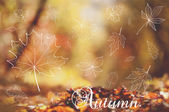 Defocused autumn background with leaves — ストックベクタ