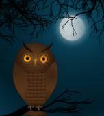 Сова в ночное время — Cтоковый вектор