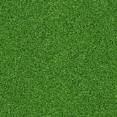 Seamless grass texture — Stock Photo
