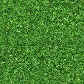 Idyllic seamless grass  — Stock Photo