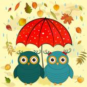 Funny owls with umbrella — Stock Vector