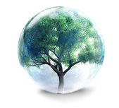 Tree in glass ball — Stock Photo