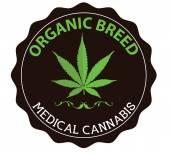Medical marijuana sign with light green cannabis leaf — Stock Vector