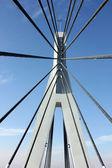 Overpass bridge rope — Stockfoto