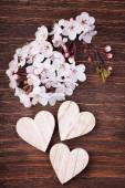 Three wooden hearts placed nicely with cherry blossom flowers on — ストック写真