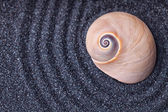 Zen garden with a wave lines in the sand with big snail shells — Stok fotoğraf