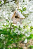 Nice Little Birdhouse — Stock Photo