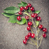 Branch of cherry berries on wooden background — Stock Photo