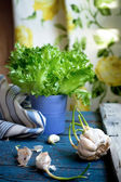 Cloves of garlic on a kitchen table near the window, natural lig — Stock Photo