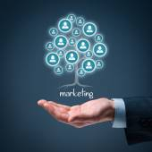 Arketing is a root of a tree — Stock Photo