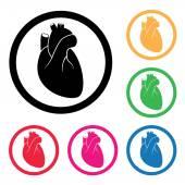 Vector human heart cardio icon  — Stock Vector
