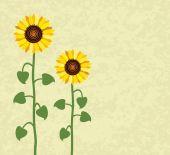 Vector sunflower summer background — Wektor stockowy